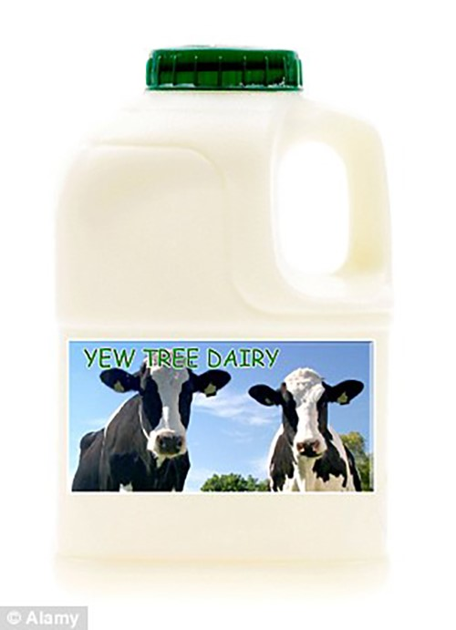Yew Tree Dairy Fresh Semi Skimmed Milk 250ml